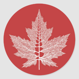 Maple Leaf Veins Sticker (Red)