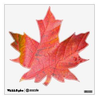 Maple Leaf Wall Decal 12x12 Only