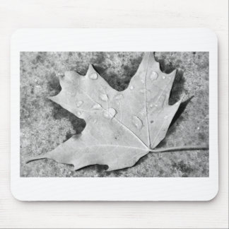 Maple Leaf with Water Droplets Mouse Pad