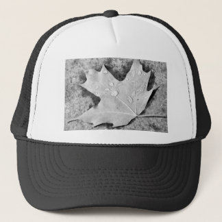 Maple Leaf with Water Droplets Trucker Hat