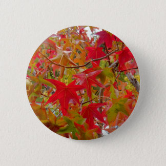 Maple Leafs Button