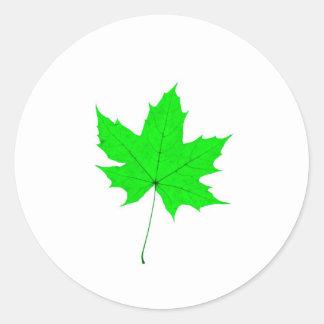 Maple Leave Round Sticker
