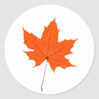 Maple Leave Stickers