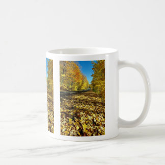 Maple leaves and Fortune Parkway, Gatineau Park, Q Classic White Coffee Mug