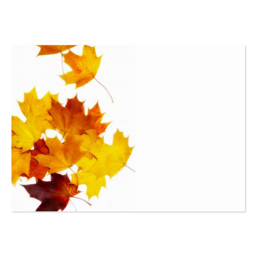 Maple leaves business card templates