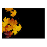 Maple leaves business cards