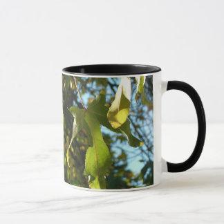 Maple leaves,fall,autumn mug