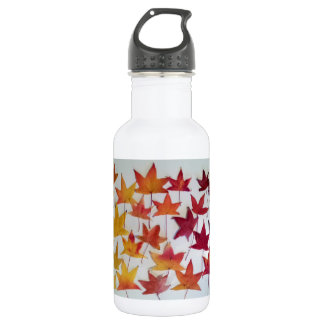 Maple Leaves Fall Foliage water bottle