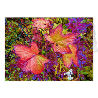 Maple Leaves Greeting Cards