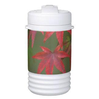 Maple Leaves, Katsura, Kyoto, Japan Igloo Beverage Dispenser