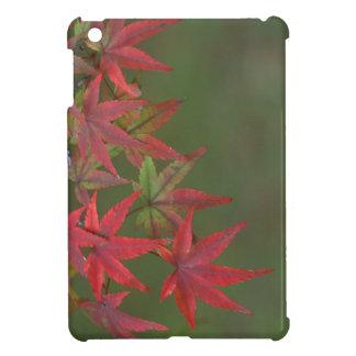 Maple Leaves, Katsura, Kyoto, Japan iPad Mini Cases