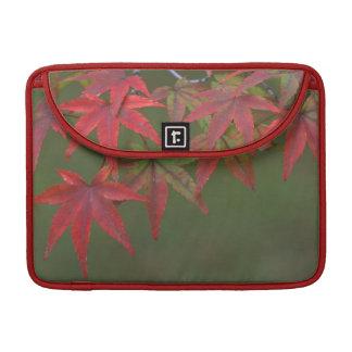 Maple Leaves, Katsura, Kyoto, Japan Sleeve For MacBooks