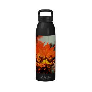 Maple Leaves Water Bottle