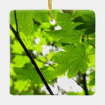 Maple Leaves with Raindrops Ceramic Ornament