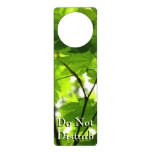 Maple Leaves with Raindrops Door Hanger