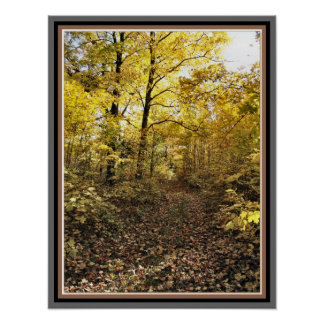 Maple Sugar Bush Path - Fall Eastern Ontario Poster