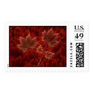 Maple Sycamore Stamps