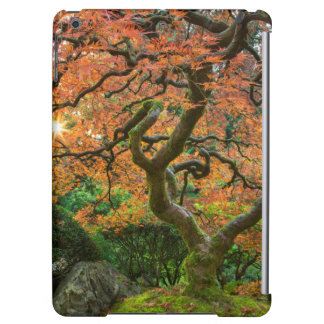 Maple Tree At The Japanese Gardens In Autumn iPad Air Case