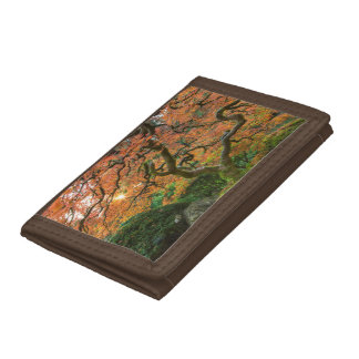 Maple Tree At The Japanese Gardens In Autumn Tri-fold Wallets