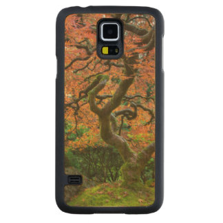 Maple Tree At The Japanese Gardens In Autumn Carved® Maple Galaxy S5 Case