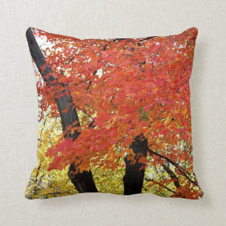 Maple Tree Autumn Throw Pillow