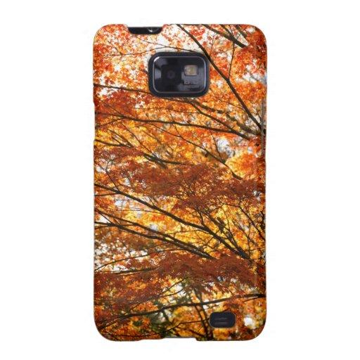 Maple tree foliage galaxy SII case