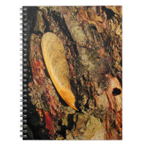 Maple Tree Helicopter On Bark Notebook