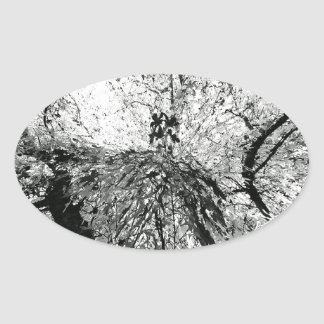 Maple Tree Inkblot Photograph Oval Sticker