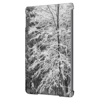 Maple Tree Outlined In Snow iPad Air Cover