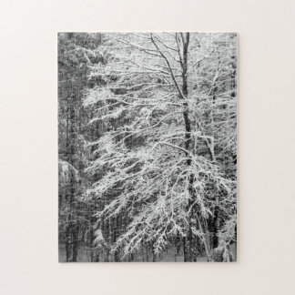 Maple Tree Outlined In Snow Jigsaw Puzzle
