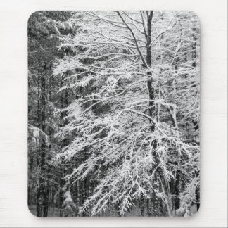 Maple Tree Outlined In Snow Mouse Pads