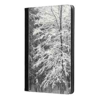 Maple Tree Outlined In Snow Photo iPad Air Case