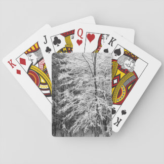 Maple Tree Outlined In Snow Poker Cards