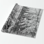 Maple Tree Outlined In Snow Wrapping Paper
