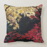 Maple trees in autumn color pillow