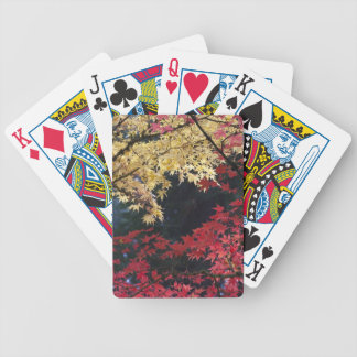 Maple trees in autumn color bicycle poker deck