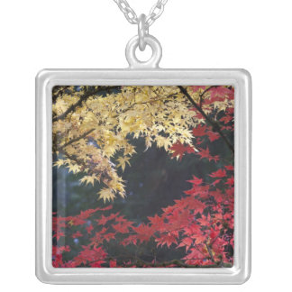 Maple trees in autumn color silver plated necklace