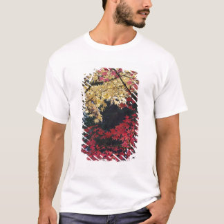 Maple trees in autumn color T-Shirt