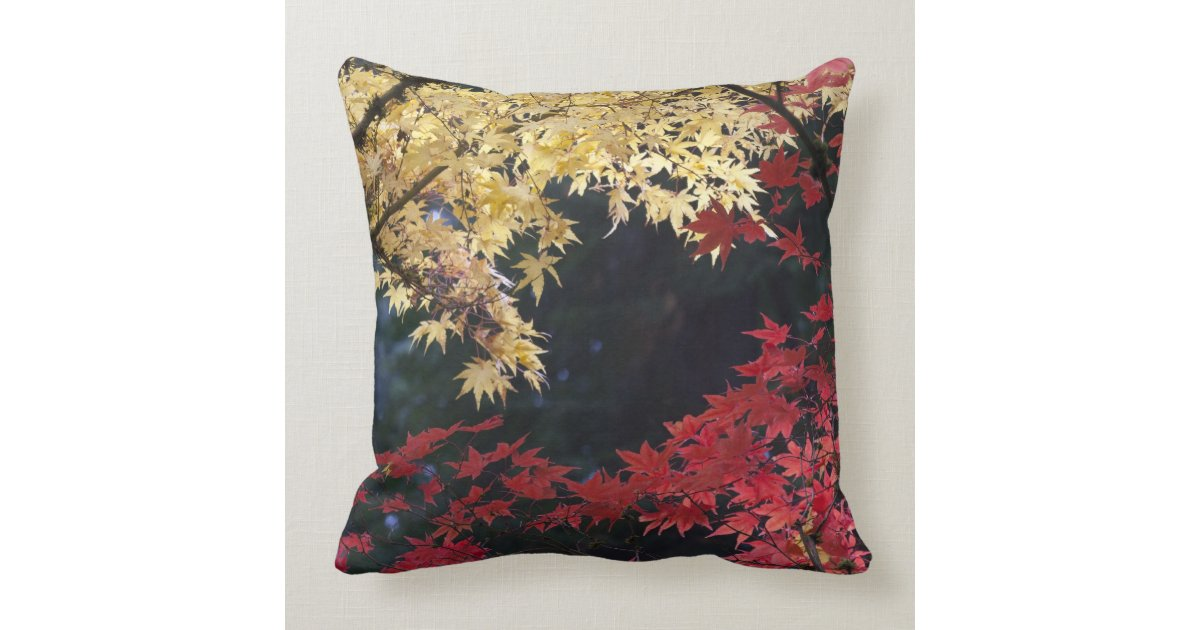 Throw Pillows Primary Colors : Maple trees in autumn color throw pillow Zazzle