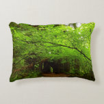 Maple Trees in Redwood Forest Accent Pillow