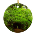 Maple Trees in Redwood Forest Ceramic Ornament