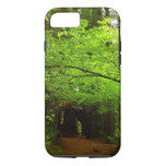 Maple Trees in Redwood Forest iPhone 7 Case