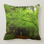 Maple Trees in Redwood Forest Throw Pillow