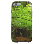 Maple Trees in Redwood Forest Tough iPhone 6 Case