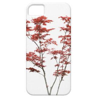 Maple Trees iPhone SE/5/5s Case