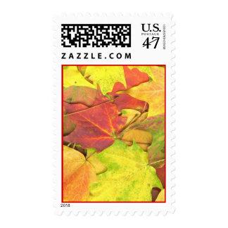 mapleleaf18 stamp