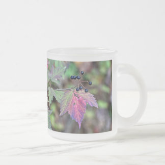 Mapleleaf Viburnum Autumn Leaves and Berries Frosted Glass Coffee Mug