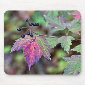 Mapleleaf Viburnum Autumn Leaves and Berries Mouse Pad