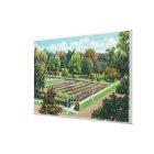 Maplewood Park Rose Garden View Canvas Print