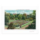 Maplewood Park Rose Garden View Postcard